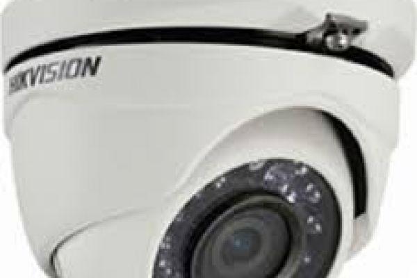 camera4A7CD40C-47E0-A146-3055-4261231D4AD8.jpg